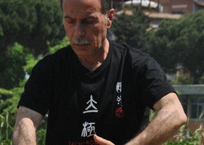 Maurizio Iandolo – Tai chi chuan